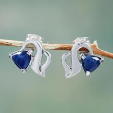 Handcrafted Sterling Silver Earrings with Sodalite