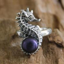 Sea Horse Secret Treasure